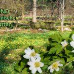 Endlich wieder: Im Botanischen Garten