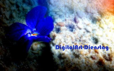 Digi-Art mit Veilchen & …