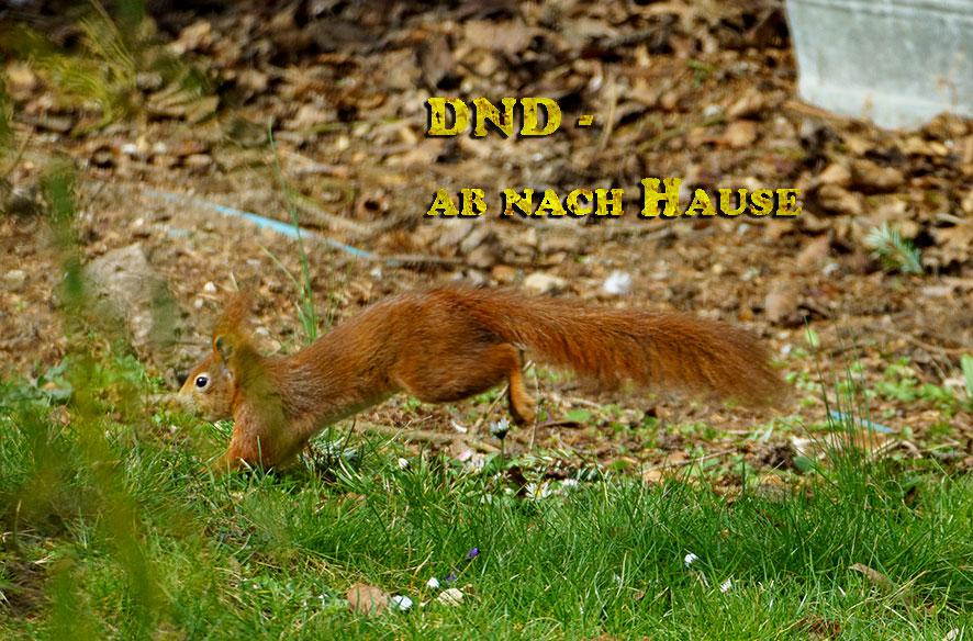 DND – Nix los
