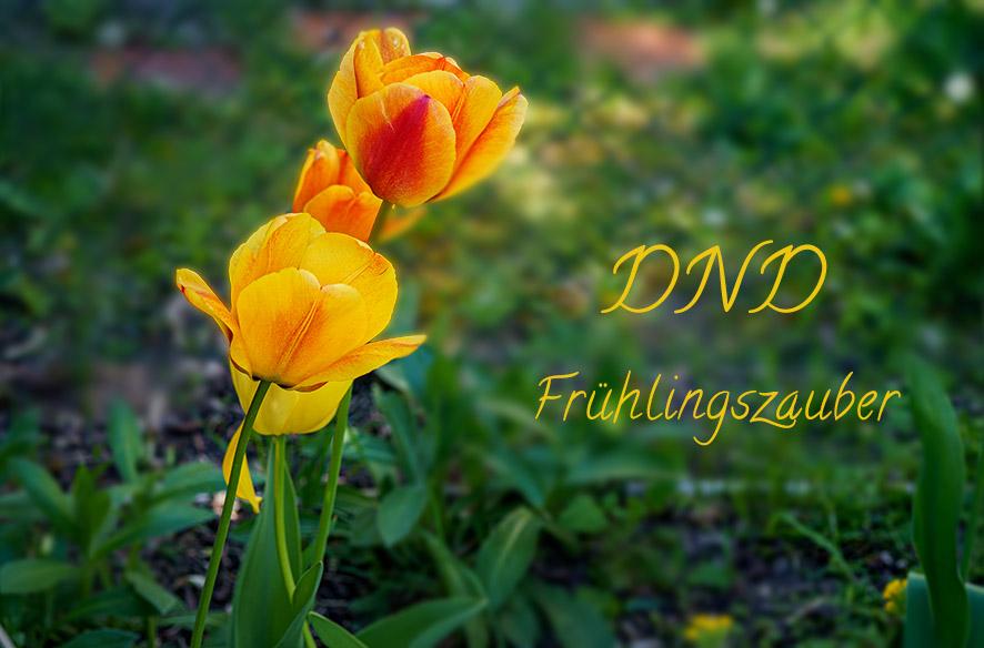 DND – Der MainZauberFrühlingsZauber