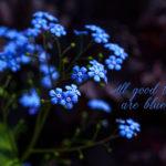 Das Blau an sich . . .