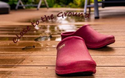 Close to the ground – überraschend nass