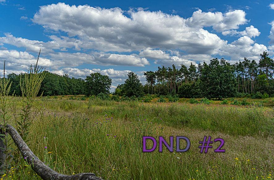 DND#2  – Glücksmomente