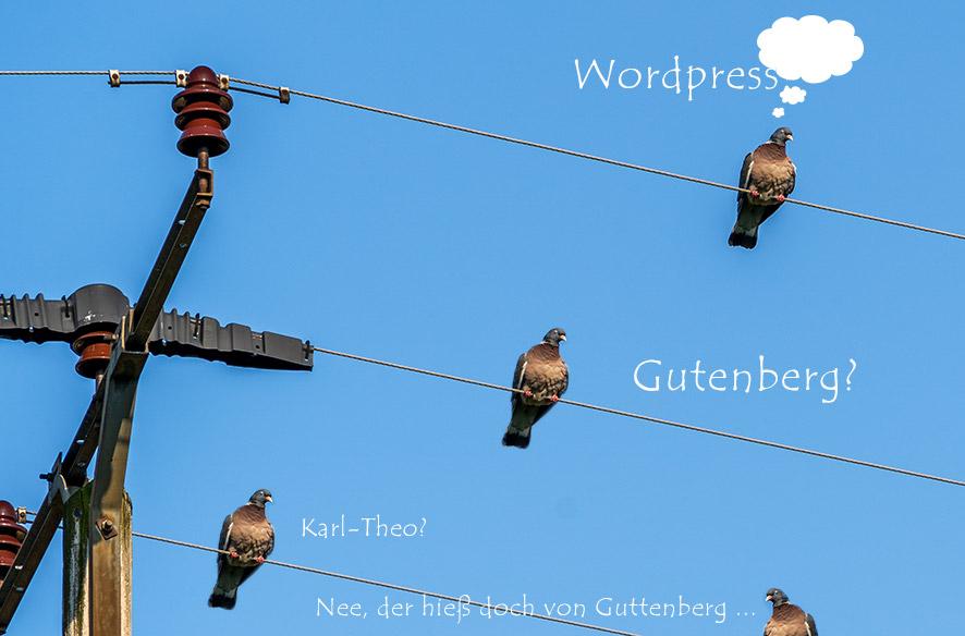 Hilfe – WordPress nervt!
