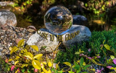 Close to light (…to the ground)