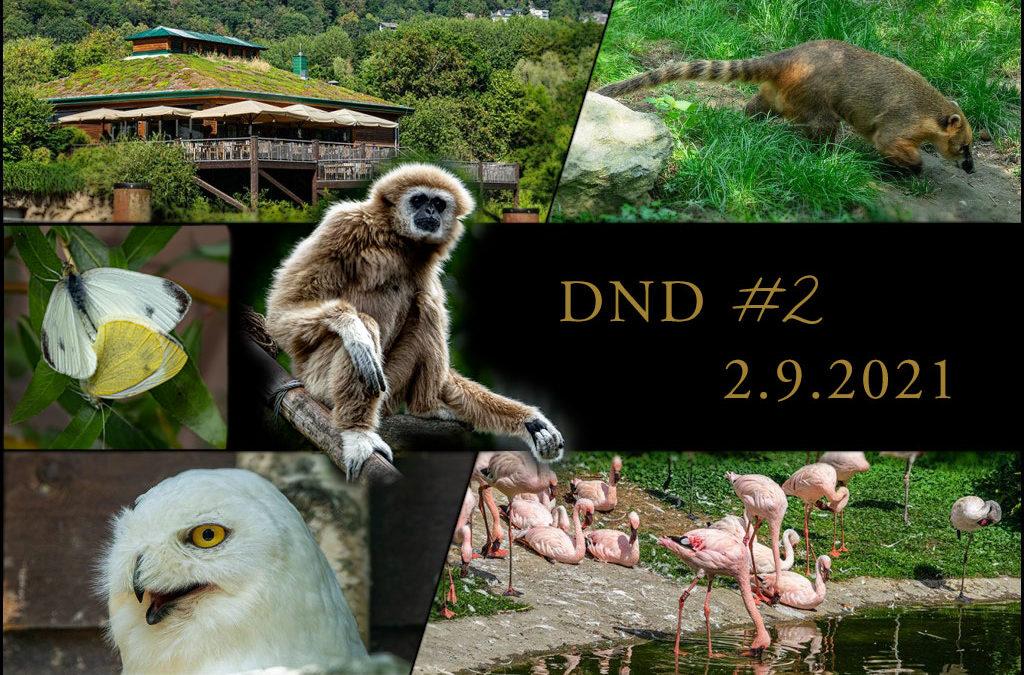 DND (2) – Zoo & Garten