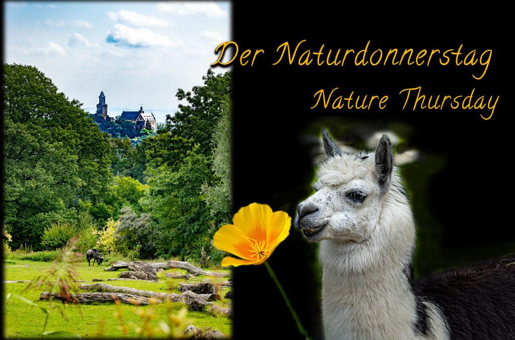 "DND – ""Gezähmte Natur"""
